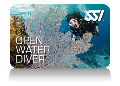 Open Water Diver Certification via SSI