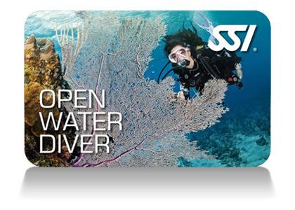 Open Water Diver Certification via SSI