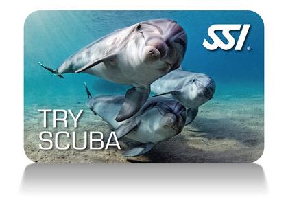 Discover Scuba class via SSI
